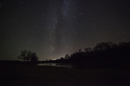 a beautiful night sky, the Milky Way and the trees Stock fotó