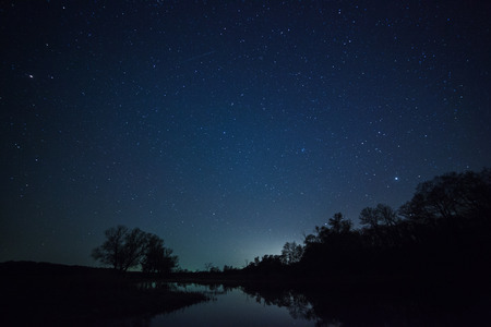 stars: a beautiful night sky, the Milky Way and the trees Stock Photo