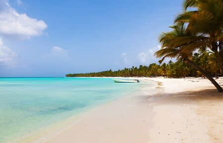 beautiful tropical beach with palm trees in the afternoon Stock fotó