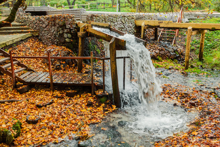 秋の森のストリームのソース