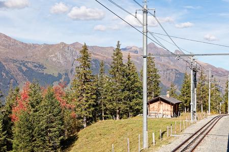 Views of Grindelwald valley from train heading for Grindelwald, Jungfrau Region, Switzerland