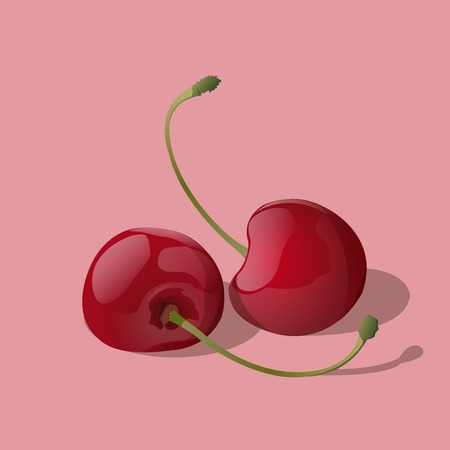 Closeup ripe red cherry berries isolated on light background  Vector Illustration  Vector