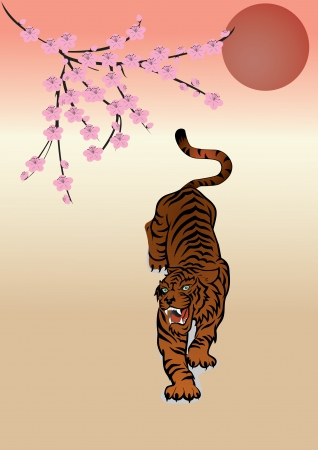 tiger Stock Vector - 20476583