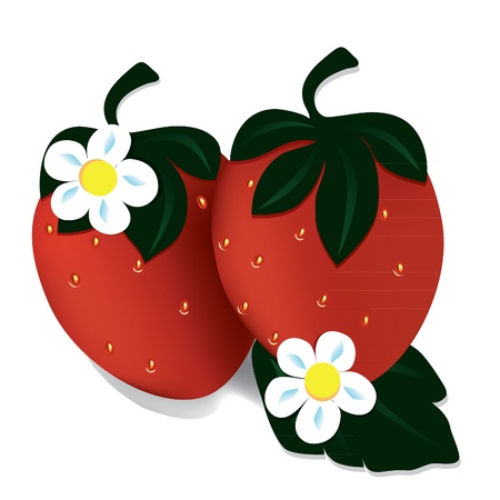 two red strawberries, background, berry, fruit, food Illustration
