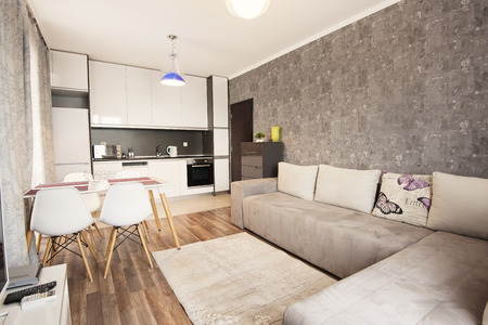 Modern bright and cozy living room interior design with sofa, dining table and kitchen. Grey and white studio apartment.