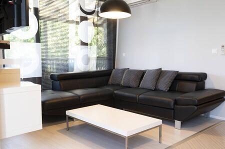 Intérieur moderne du salon avec canapé en cuir noir confortable. Banque d'images