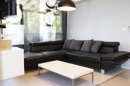 Modern interior of living room with comfortable black leather sofa.