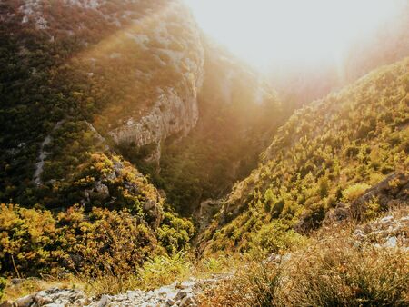 A beautiful canyon covered in shrubberies and sunlight. Banco de Imagens
