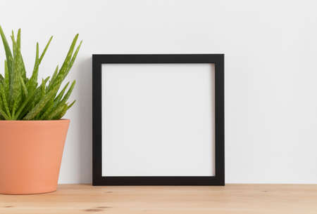 Black square frame mockup with a aloe vera in a ceramic pot on a wooden table.