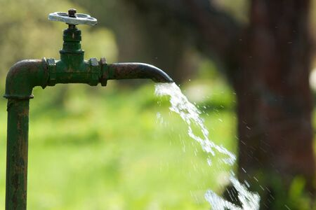 crane in garden with flowing water