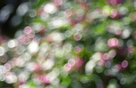 off focus abstract background photo