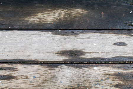 Wet brown wood floor during rain, abstract background, shallow depth of field with copy space. 写真素材