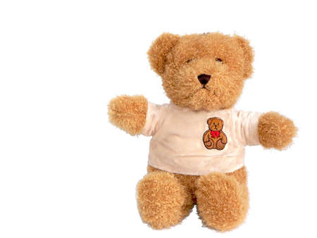 The brown toy bear in plush T-shirt which sits on a white background photo