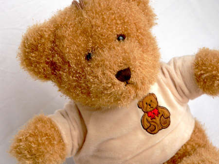 toy bear: The brown toy bear in plush T-shirt