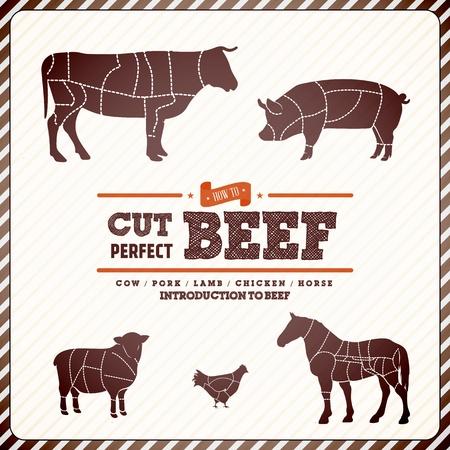 macellaio: Guida diagramma Vintage per il taglio di carne Vettoriali
