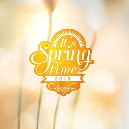 It s Spring Time typographic design with colourful background