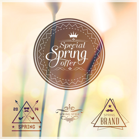 Special Spring Offer typographic design set with colourful background