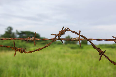 barbed wires: alambres de p�as contra el cielo azul
