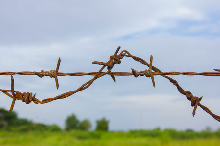 barbed wires against blue sky  photo