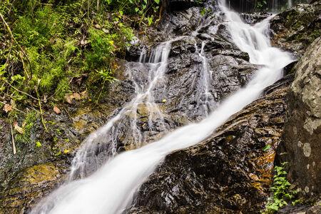 taking the plunge: Wang Bua Ban waterfall in Doi Suthep-Pui Nationnal Park , Chiangmai.
