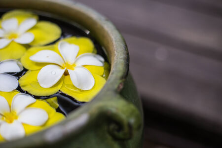 colorful of Plumeria flower floating in the ancient bowl. photo