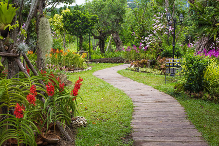 Pathway in garden design. photo