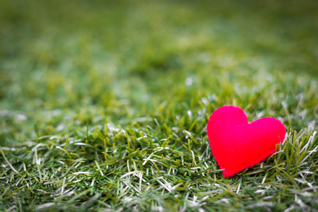 closeup of a red heart on the grass. photo