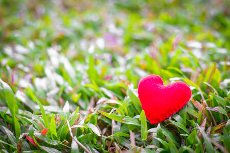 closeup of a red heart on the grass.