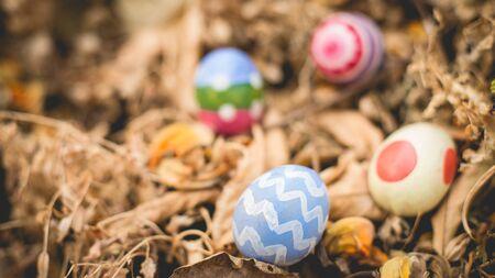 are hidden: Easter eggs hidden in leaves.