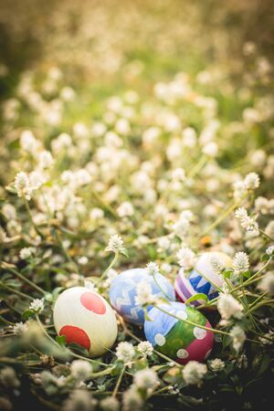colorful Easter egg in the fresh spring meadow. photo