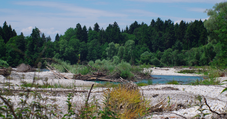 reserve: Isar at Geretsried nature reserve