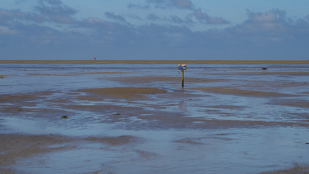 Marked with wooden stakes in the watt of the North Sea near Westerhefer