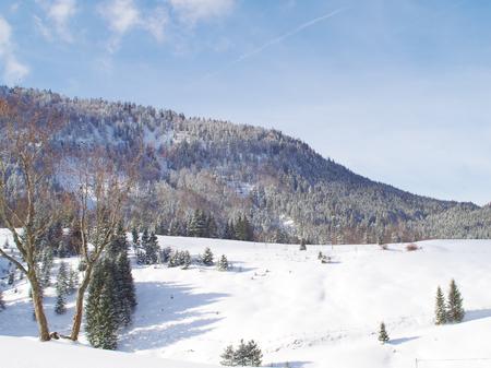 Winterlandschaft am Achensee in Tirol Standard-Bild - 91124093