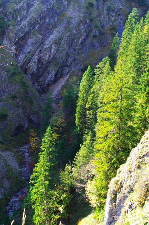 Ravenhead Gorge in Upper Bavaria Standard-Bild - 104442701