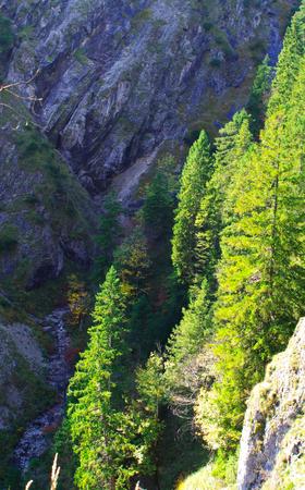 Ravenhead Gorge in Upper Bavaria Standard-Bild - 104442702