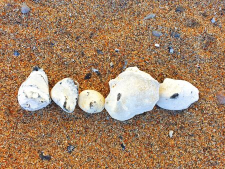 Five flints laid out in a row in the sand