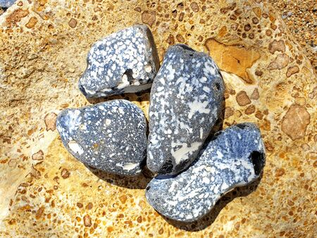 Four flints with dots on a rock