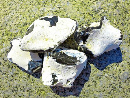Four white flints on green rock Standard-Bild - 138510746