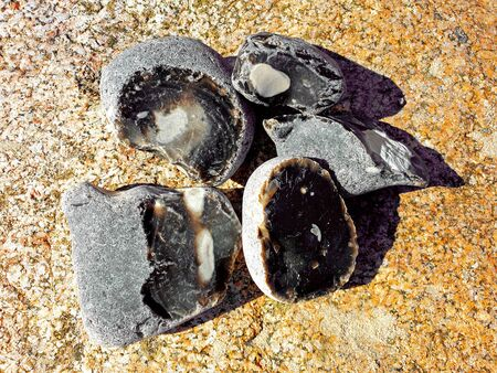Five flints with demolition on a rock on the Baltic Sea Standard-Bild