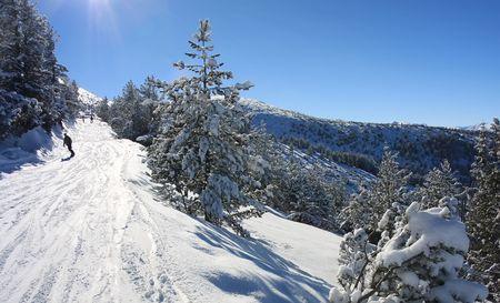 Snowboarding in Bulgaria. Alpine ski resort Borovets