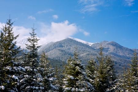 View of mountains panorama from ski lift. Alpine ski resort Bansko, Bulgaria