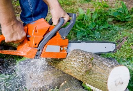 резка: Человек с бензопилой резки дерева