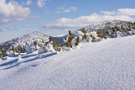 Panorama of winter mountains. Alpine ski resort Borovets, Bulgaria photo