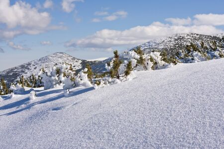 Panorama of winter mountains. Alpine ski resort Borovets, Bulgaria photo