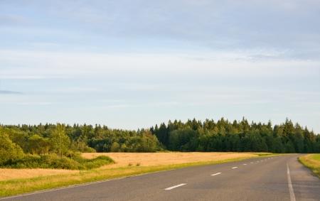 Empty country road in rural landscape 版權商用圖片
