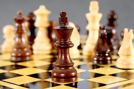 mated: Chess king - Chess comes to end the king is check mated togesther