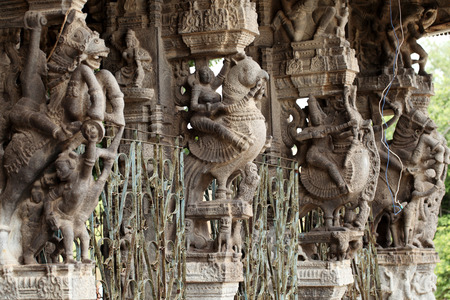 tamil nadu: Ancient stone carvings in Varadaraja Temple. Kanchipuram, Tamil Nadu, India