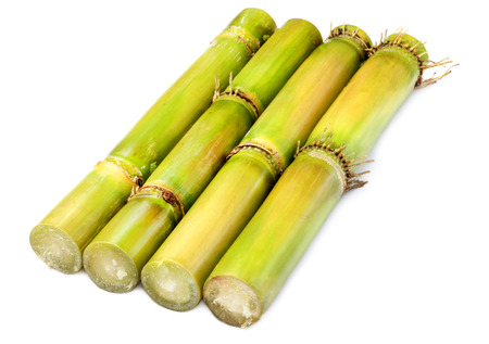 Fresh  Sugarcane over white background Stock Photo