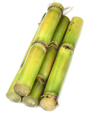 Fresh  Sugarcane over white background Stock Photo