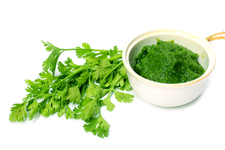 Coriander leaves with paste over white background Imagens
